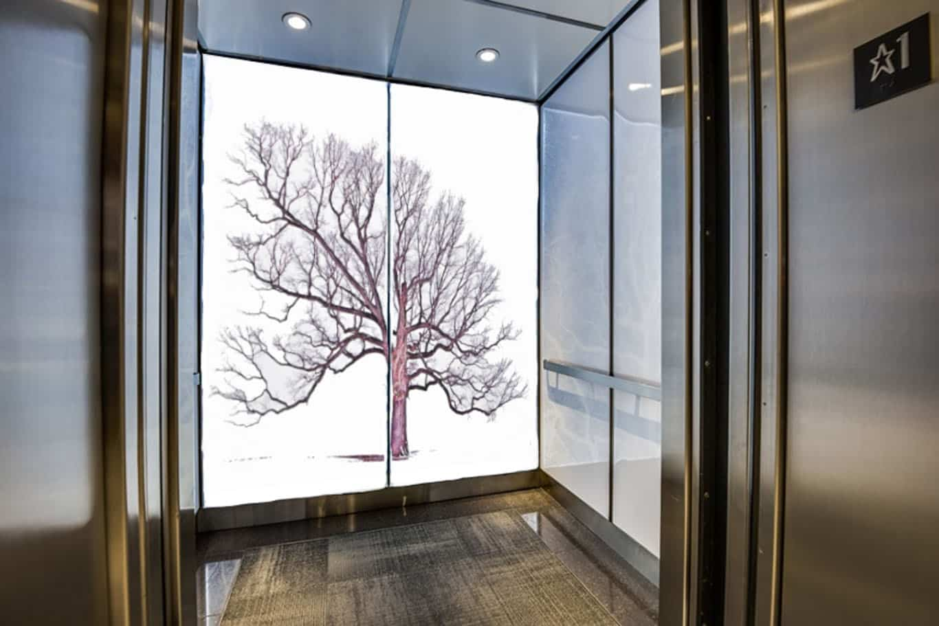 Commercial Applications of Digitally Printed Glass of an Elevator Cab with a large tree